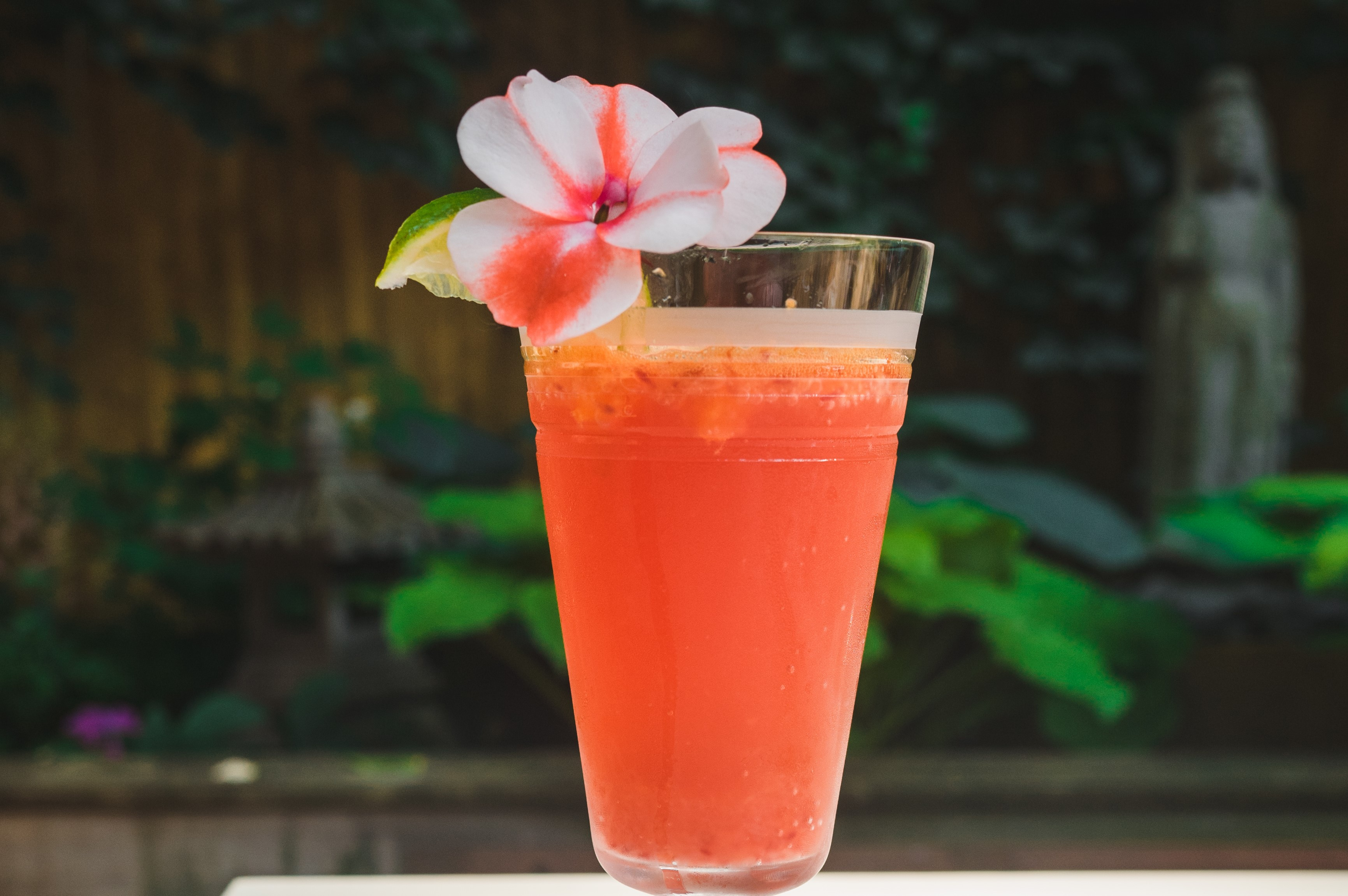 "Blood Orange ginger ""Mocktail"""